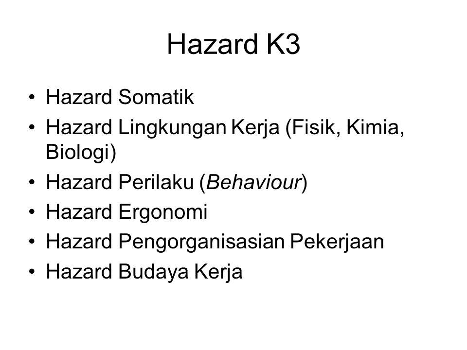 Hazard K3 Hazard Somatik