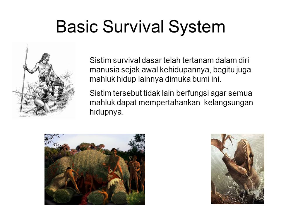 Basic Survival System