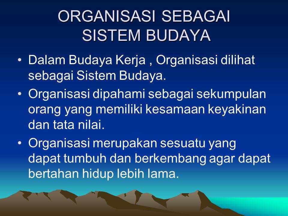 ORGANISASI SEBAGAI SISTEM BUDAYA