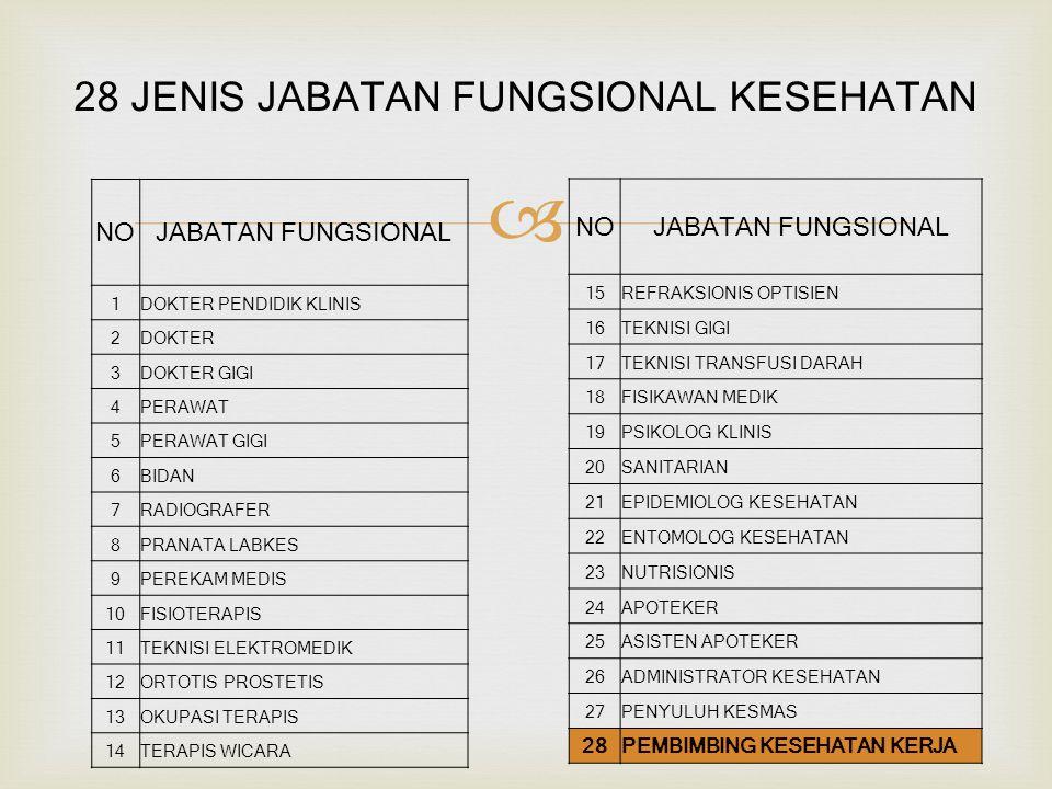 28 JENIS JABATAN FUNGSIONAL KESEHATAN