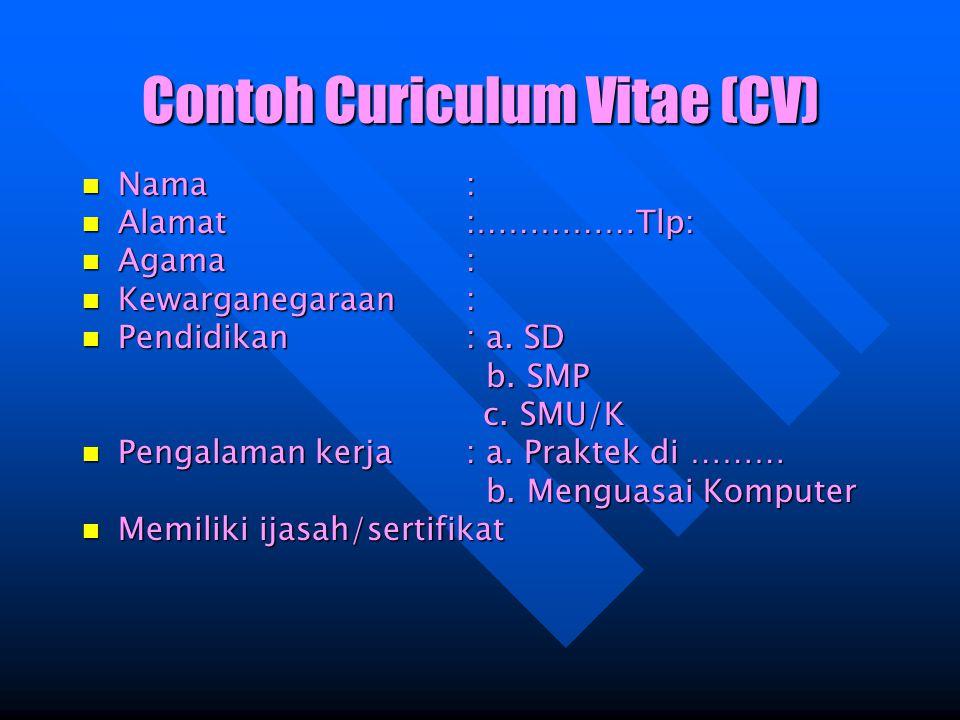 Contoh Curiculum Vitae (CV)