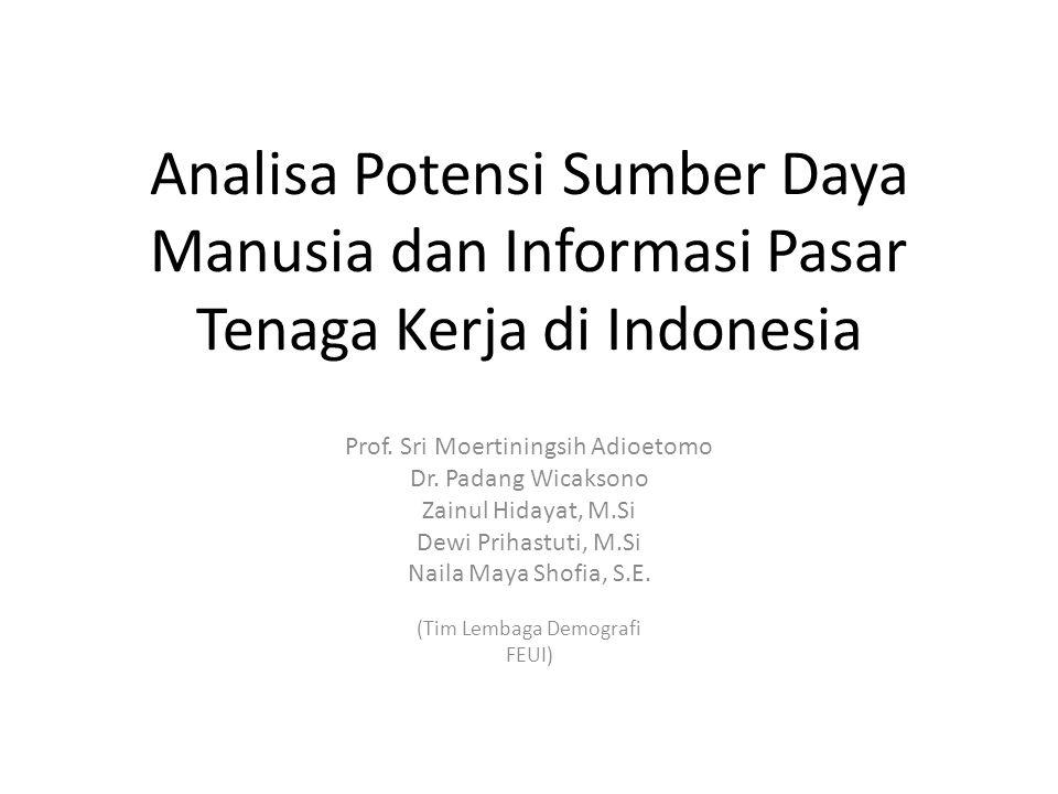 Analisa Potensi Sumber Daya Manusia dan Informasi Pasar Tenaga Kerja di Indonesia