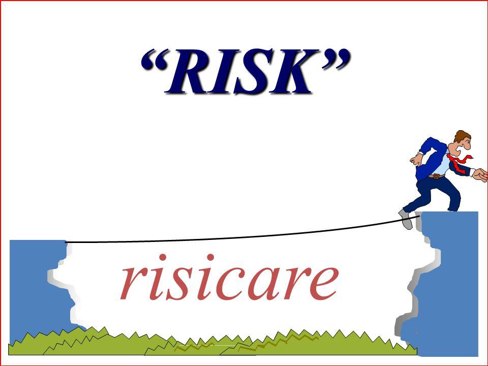 RISK risicare