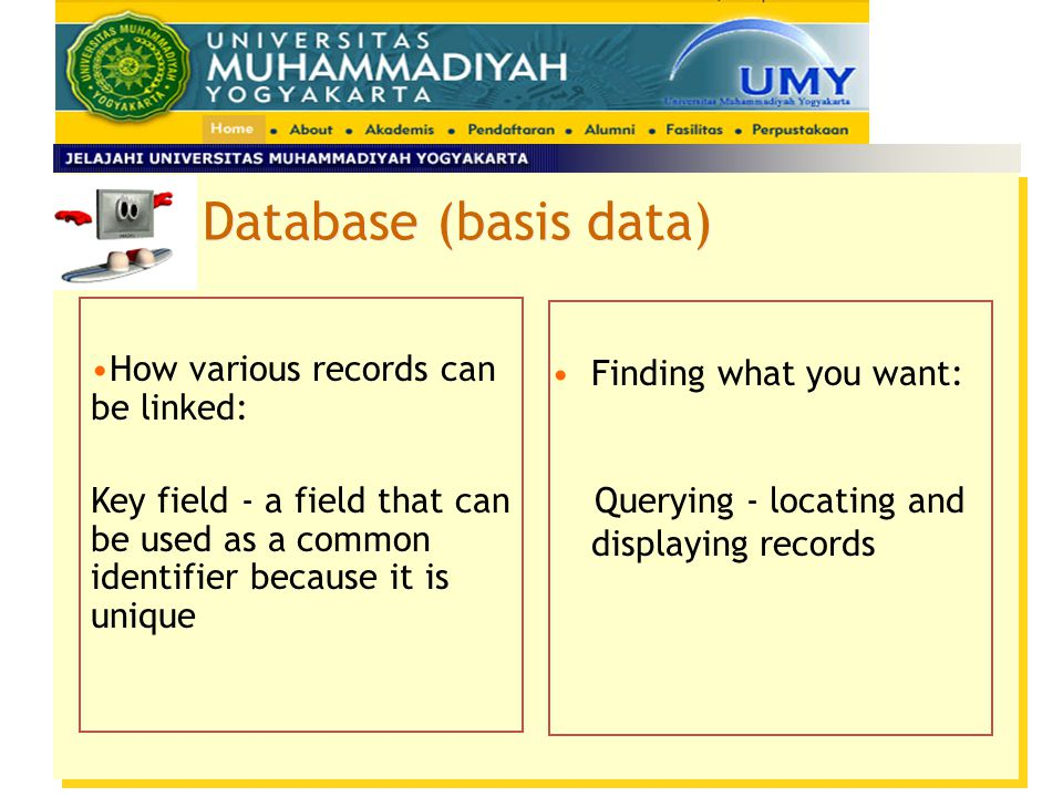 Database (basis data) How various records can be linked:
