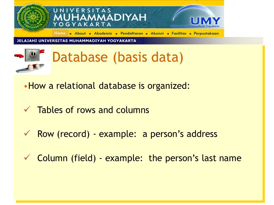 Database (basis data) How a relational database is organized:
