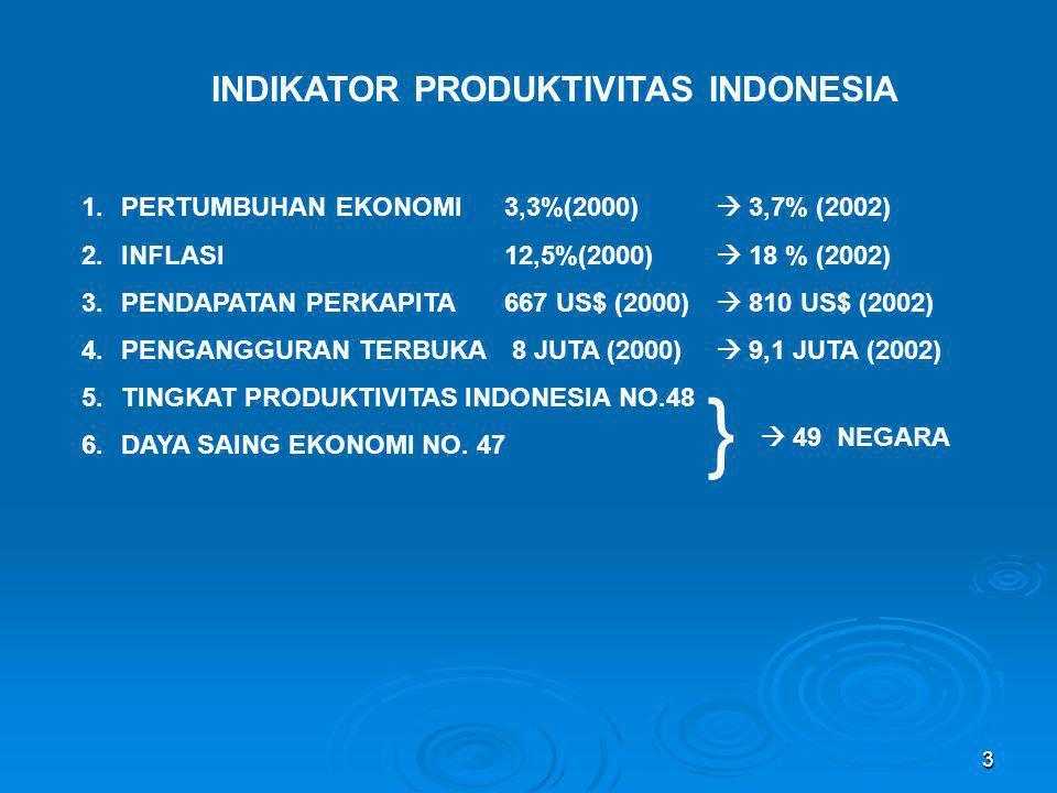 INDIKATOR PRODUKTIVITAS INDONESIA