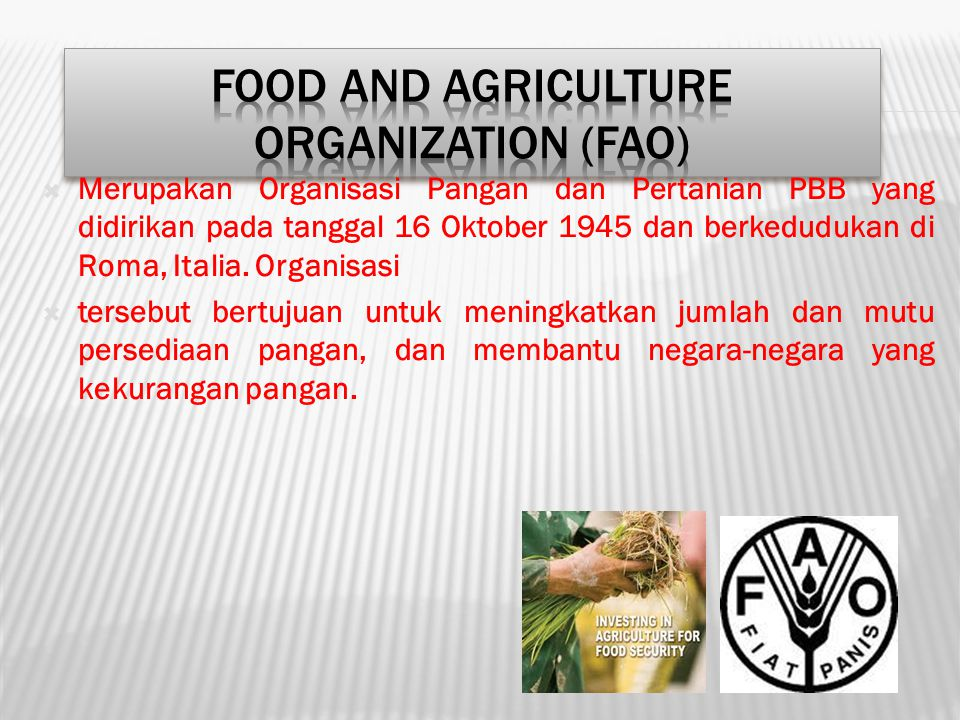 Food and Agriculture Organization (FAO)