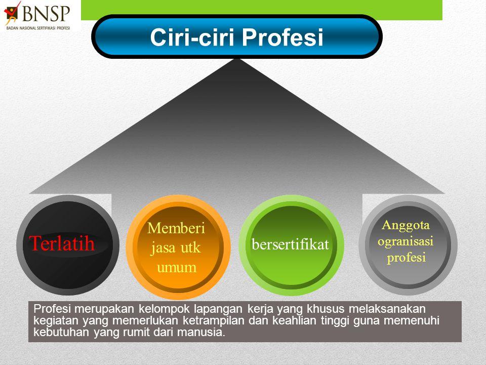 Ciri-ciri Profesi Terlatih Memberi jasa utk umum bersertifikat Anggota