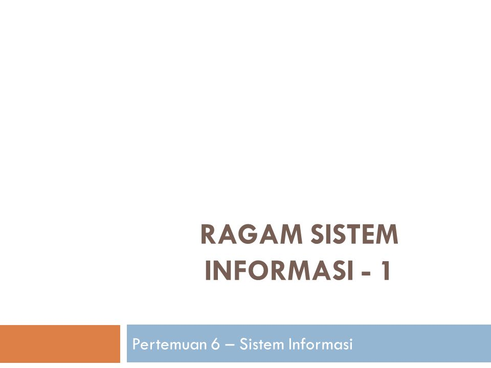RAGAM SISTEM INFORMASI - 1