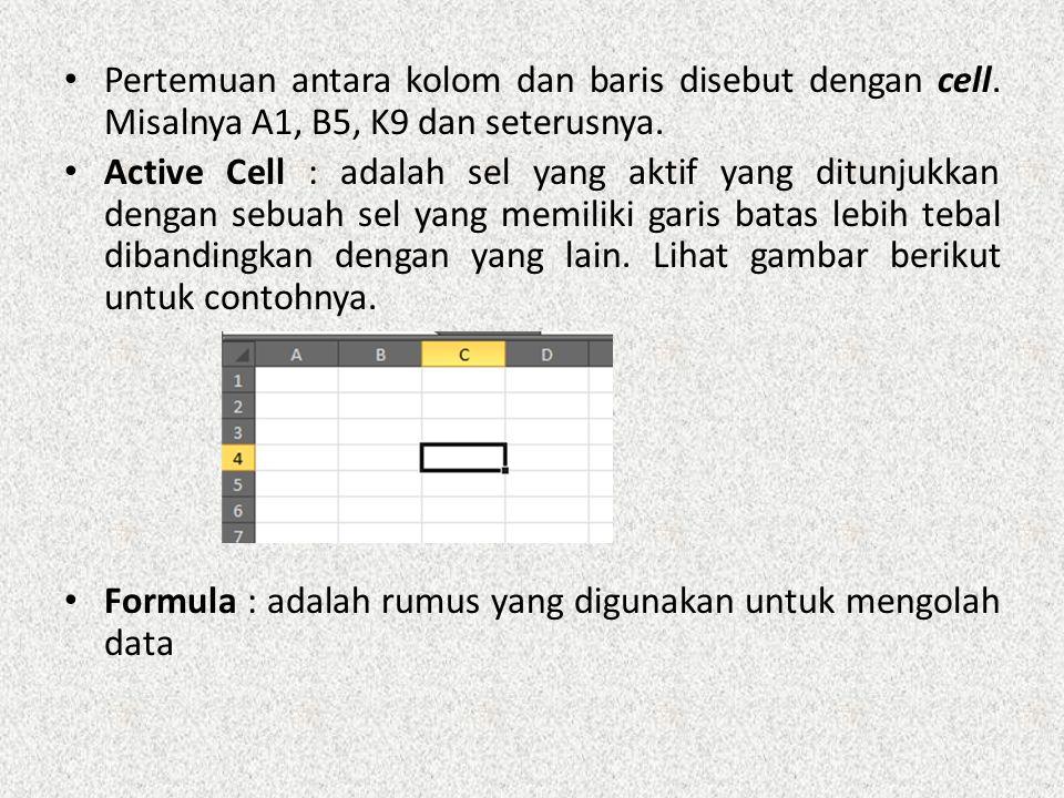 Pertemuan antara kolom dan baris disebut dengan cell