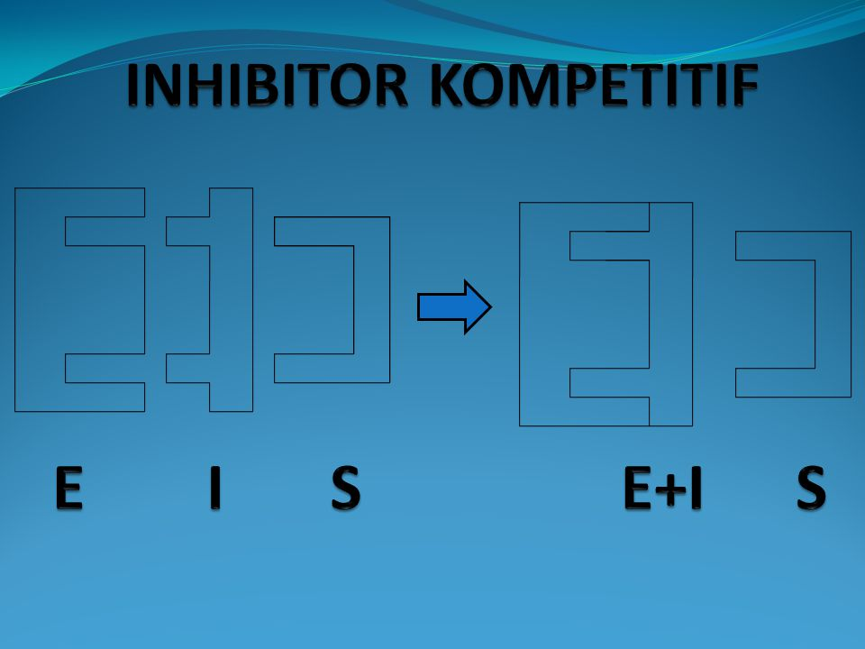 INHIBITOR KOMPETITIF E I S E+I S