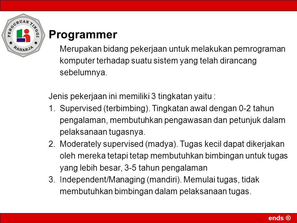 Programmer Merupakan bidang pekerjaan untuk melakukan pemrograman