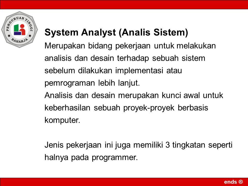 System Analyst (Analis Sistem)