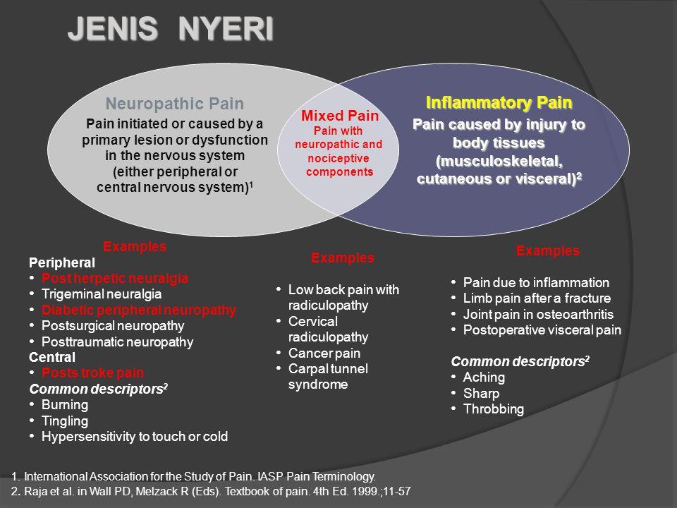 JENIS NYERI Neuropathic Pain Inflammatory Pain