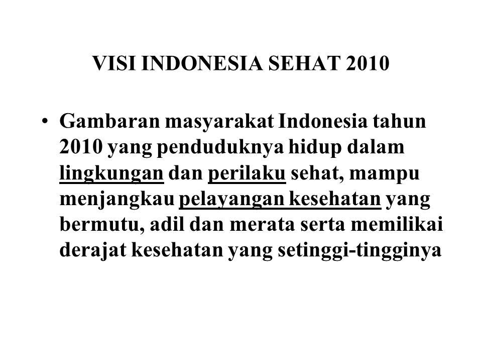 VISI INDONESIA SEHAT 2010