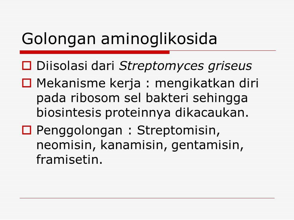 Golongan aminoglikosida