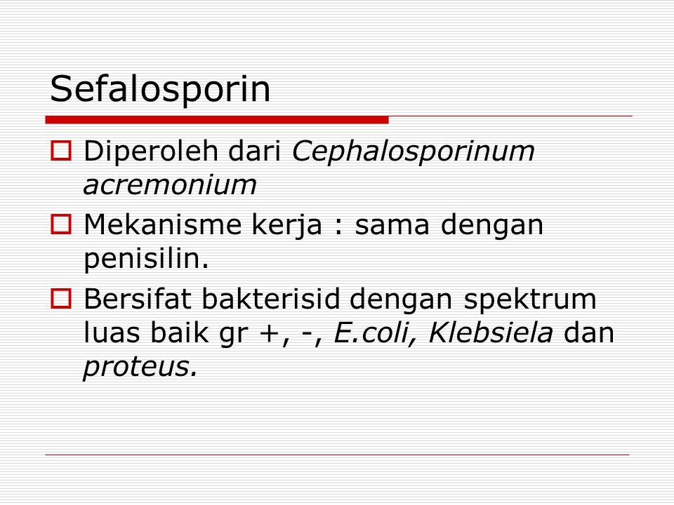 Sefalosporin Diperoleh dari Cephalosporinum acremonium