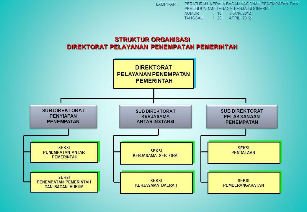 STRUKTUR ORGANISASI DIREKTORAT PELAYANAN PENEMPATAN PEMERINTAH