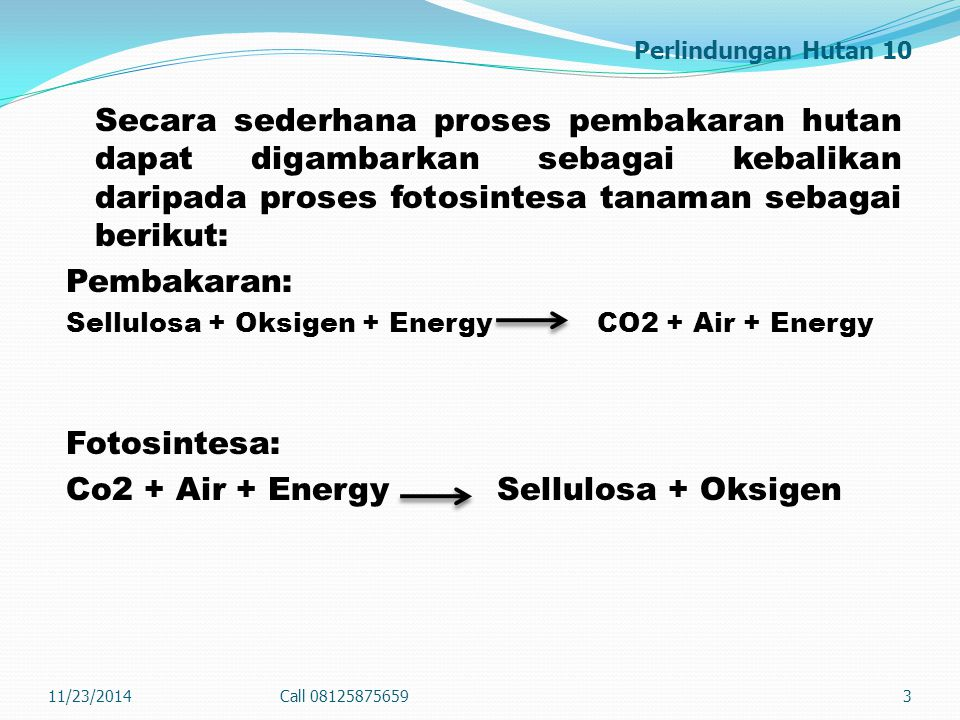Co2 + Air + Energy Sellulosa + Oksigen