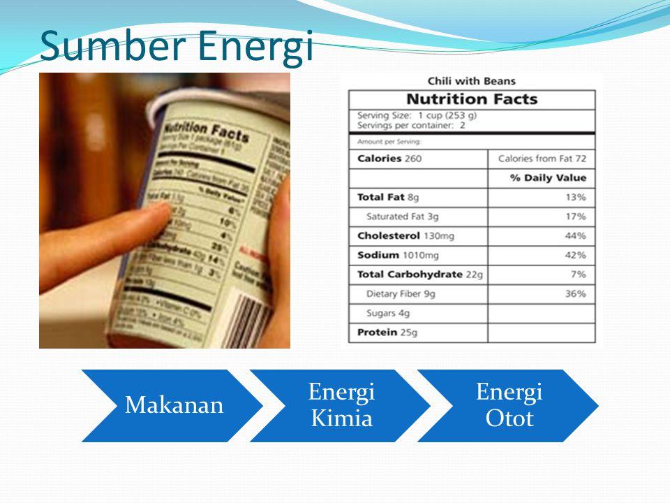 Sumber Energi Makanan Energi Kimia Energi Otot