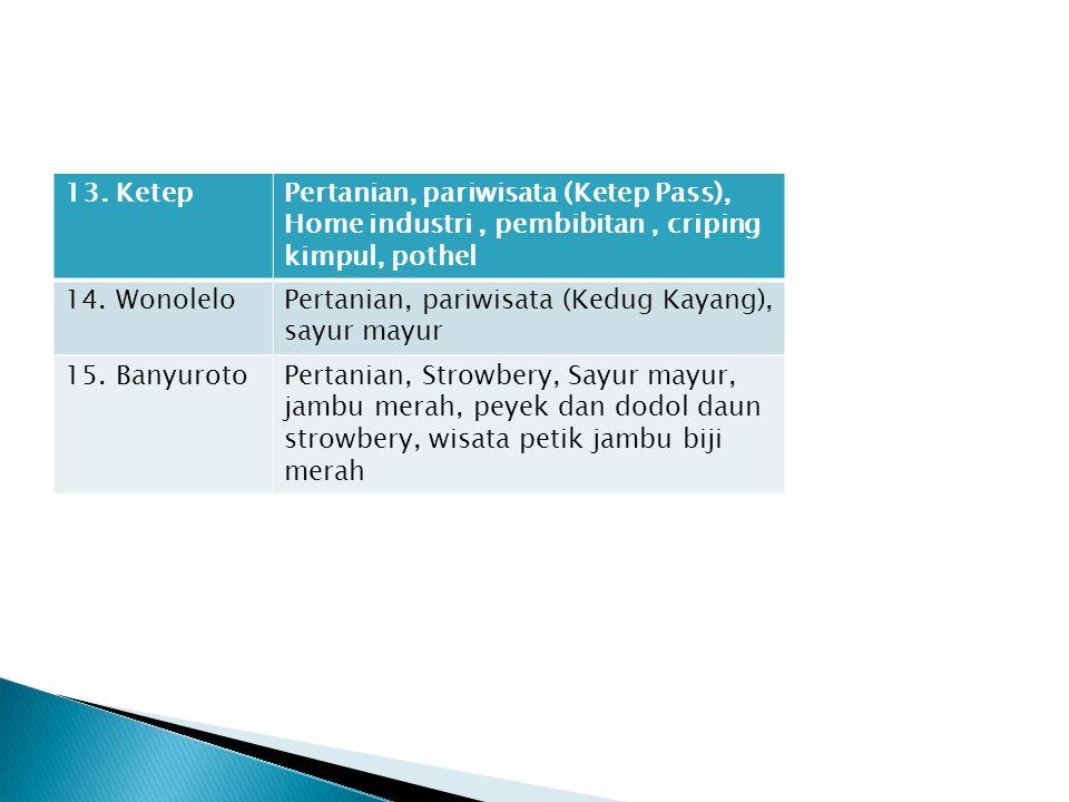 13. Ketep Pertanian, pariwisata (Ketep Pass), Home industri , pembibitan , criping kimpul, pothel. 14. Wonolelo.