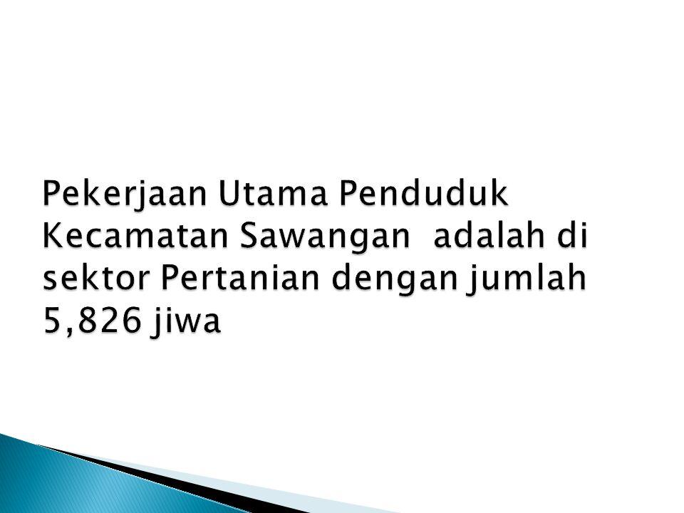Pekerjaan Utama Penduduk Kecamatan Sawangan adalah di sektor Pertanian dengan jumlah 5,826 jiwa