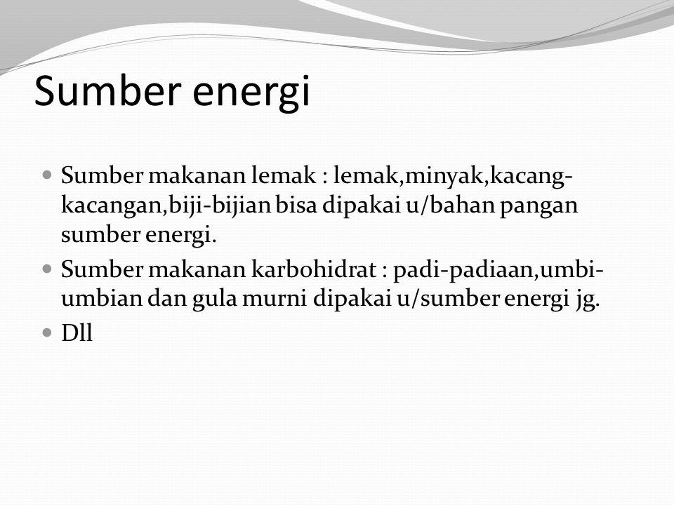 Sumber energi Sumber makanan lemak : lemak,minyak,kacang-kacangan,biji-bijian bisa dipakai u/bahan pangan sumber energi.