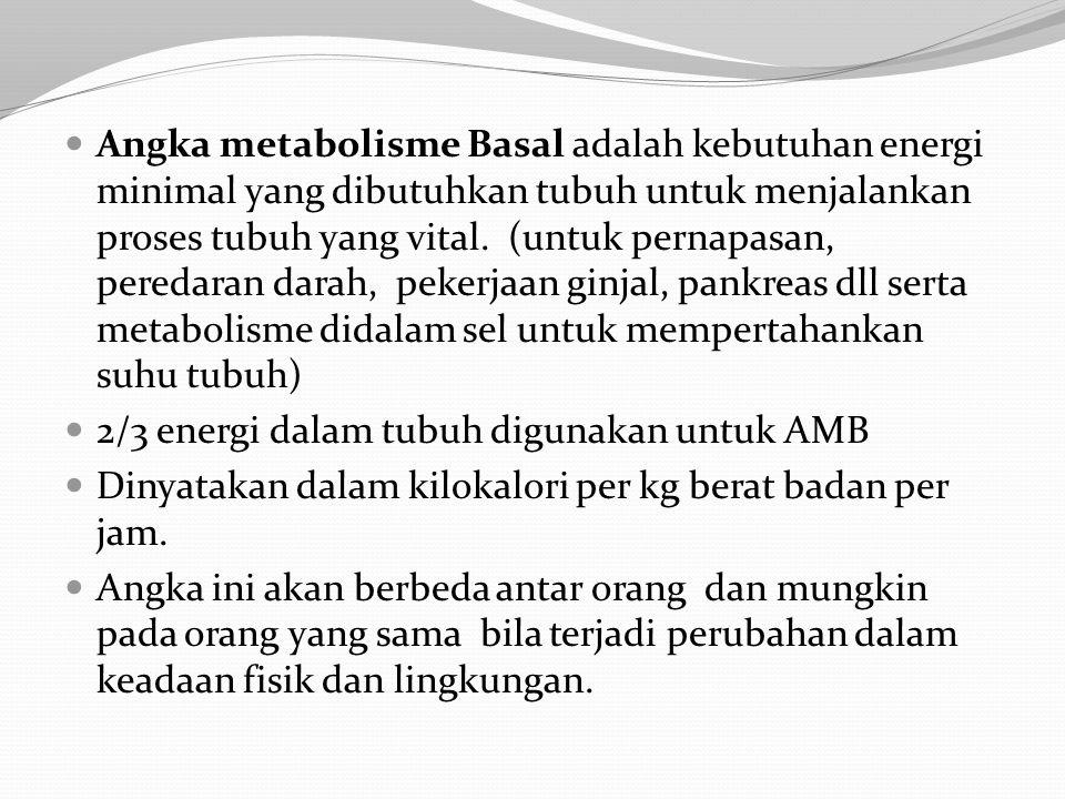 Angka metabolisme Basal adalah kebutuhan energi minimal yang dibutuhkan tubuh untuk menjalankan proses tubuh yang vital. (untuk pernapasan, peredaran darah, pekerjaan ginjal, pankreas dll serta metabolisme didalam sel untuk mempertahankan suhu tubuh)