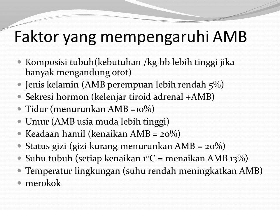 Faktor yang mempengaruhi AMB