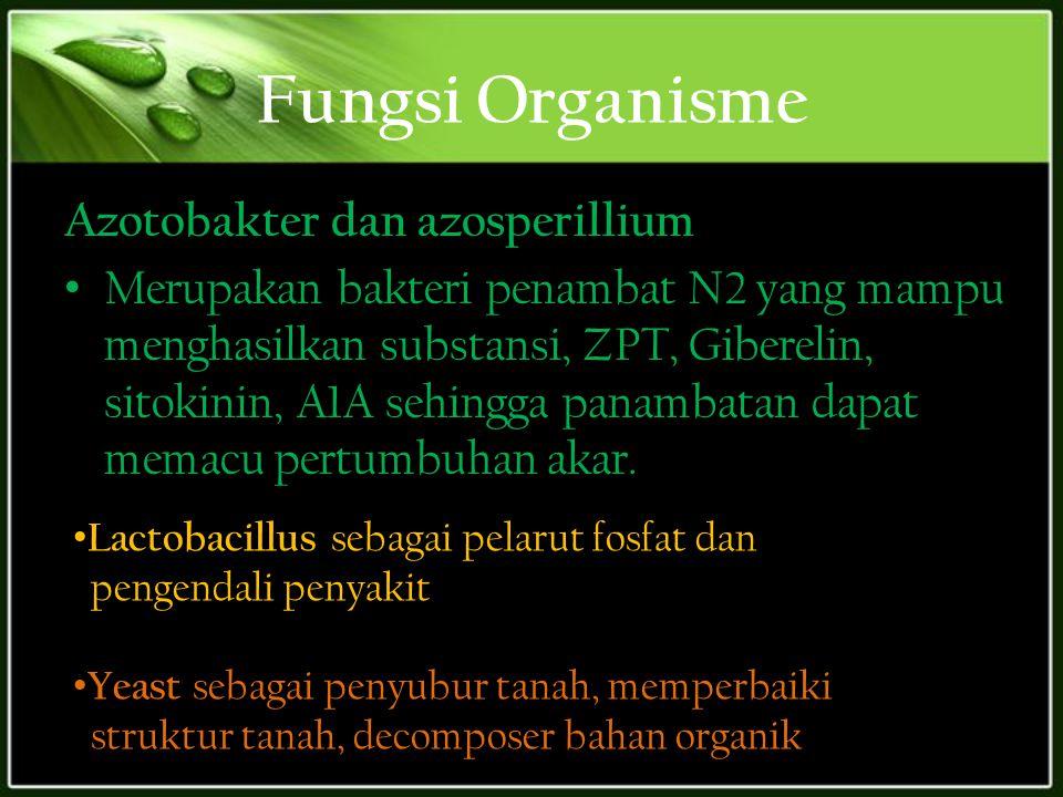 Fungsi Organisme Azotobakter dan azosperillium