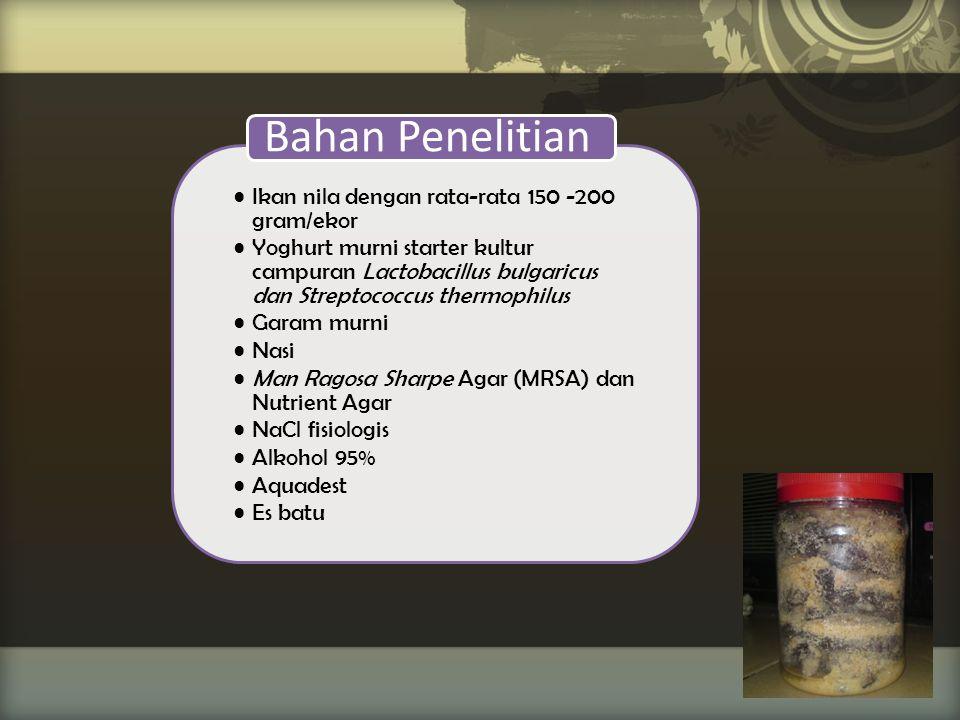 Bahan Penelitian Ikan nila dengan rata-rata 150 -200 gram/ekor