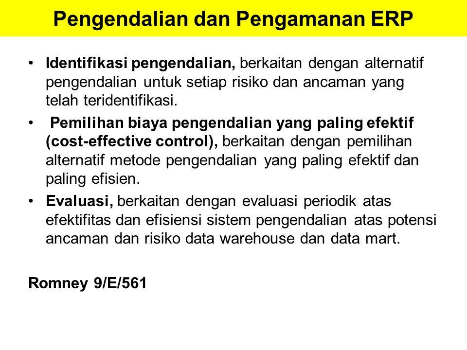 Pengendalian dan Pengamanan ERP