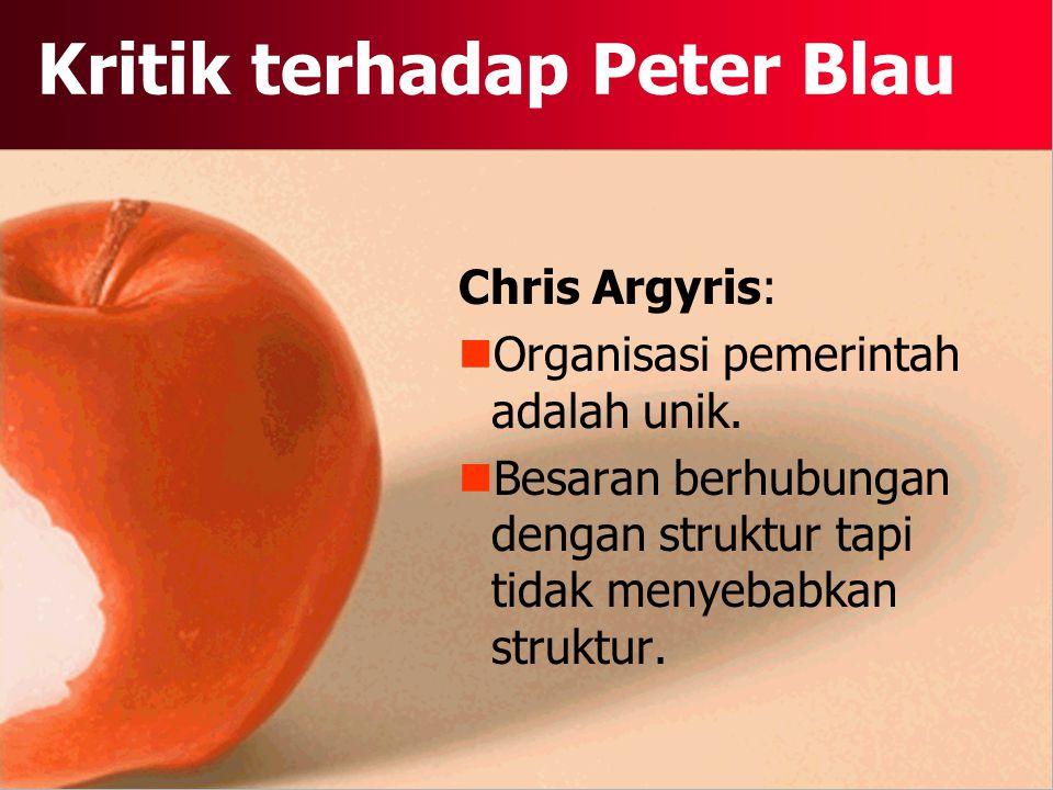 Kritik terhadap Peter Blau