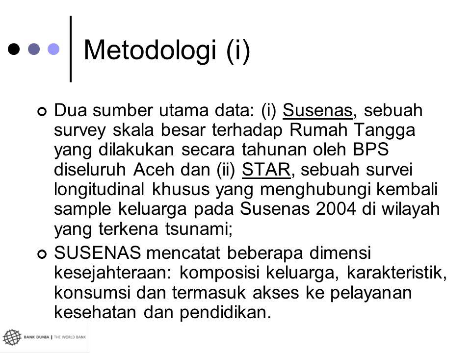 Metodologi (i)