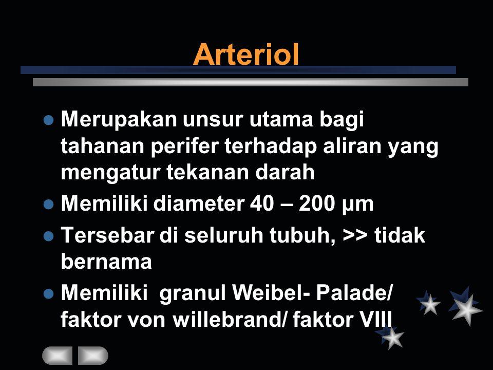Arteriol Merupakan unsur utama bagi tahanan perifer terhadap aliran yang mengatur tekanan darah. Memiliki diameter 40 – 200 μm.