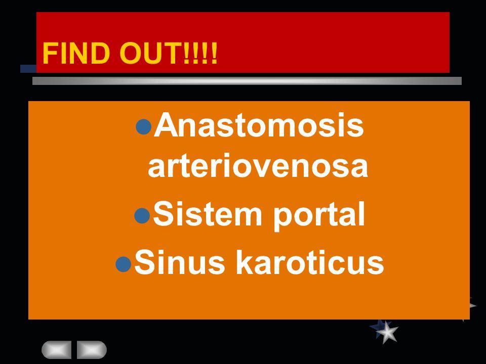 Anastomosis arteriovenosa