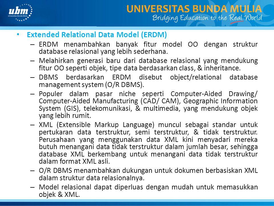 Extended Relational Data Model (ERDM)