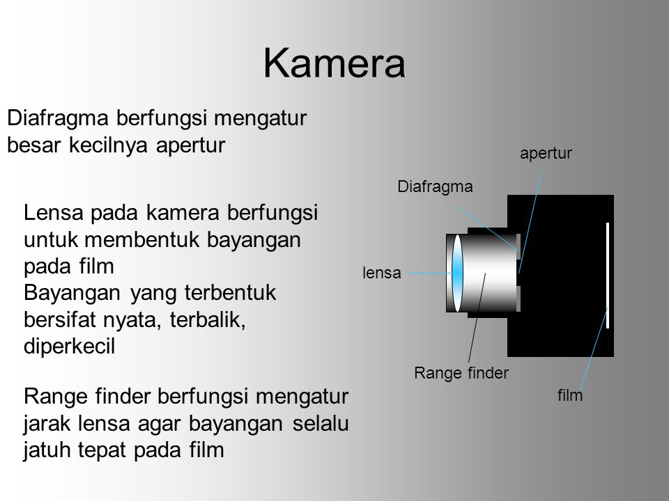 Kamera Diafragma berfungsi mengatur besar kecilnya apertur