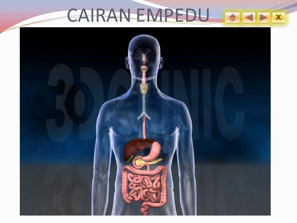 CAIRAN EMPEDU X