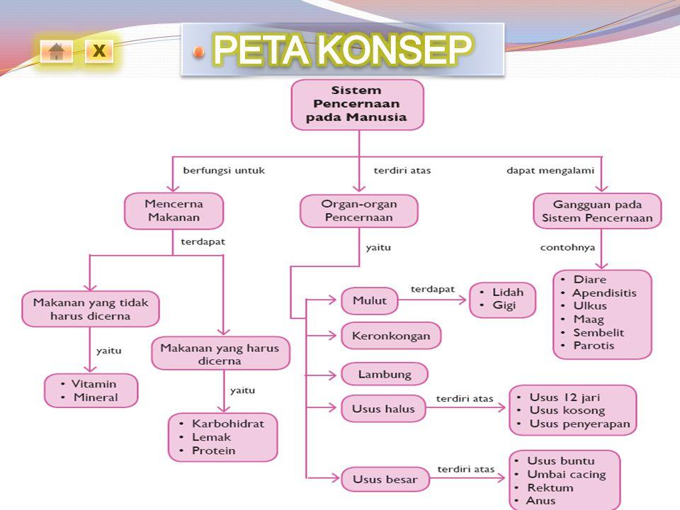 PETA KONSEP X
