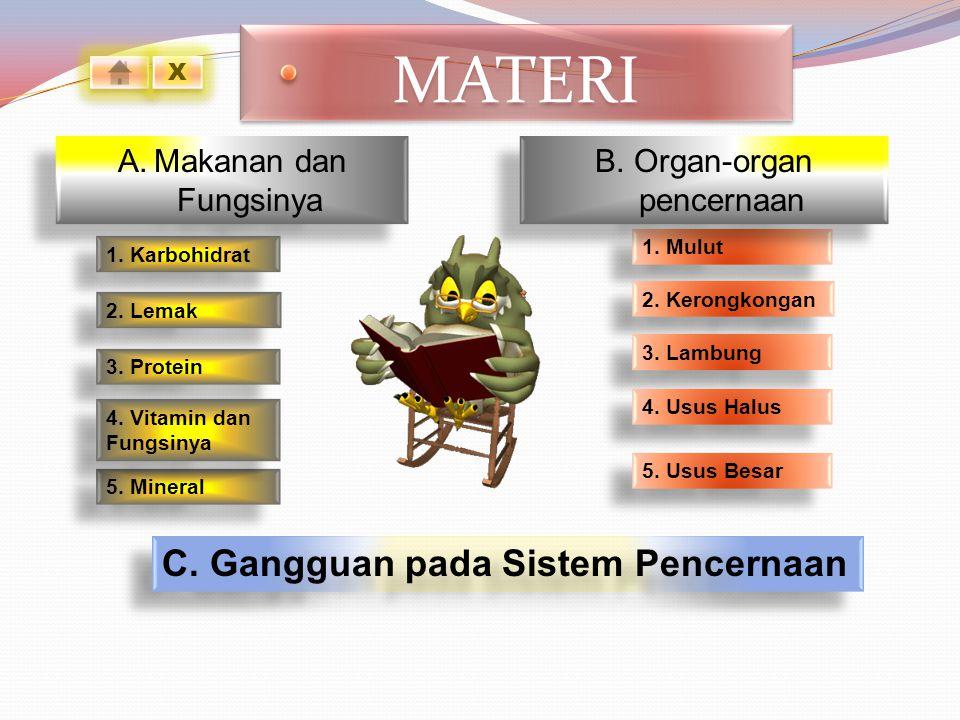 B. Organ-organ pencernaan