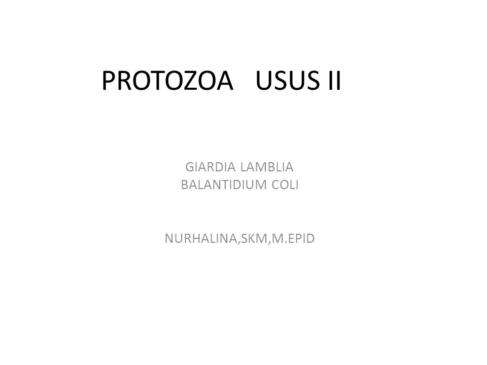 GIARDIA LAMBLIA BALANTIDIUM COLI NURHALINA,SKM,M.EPID