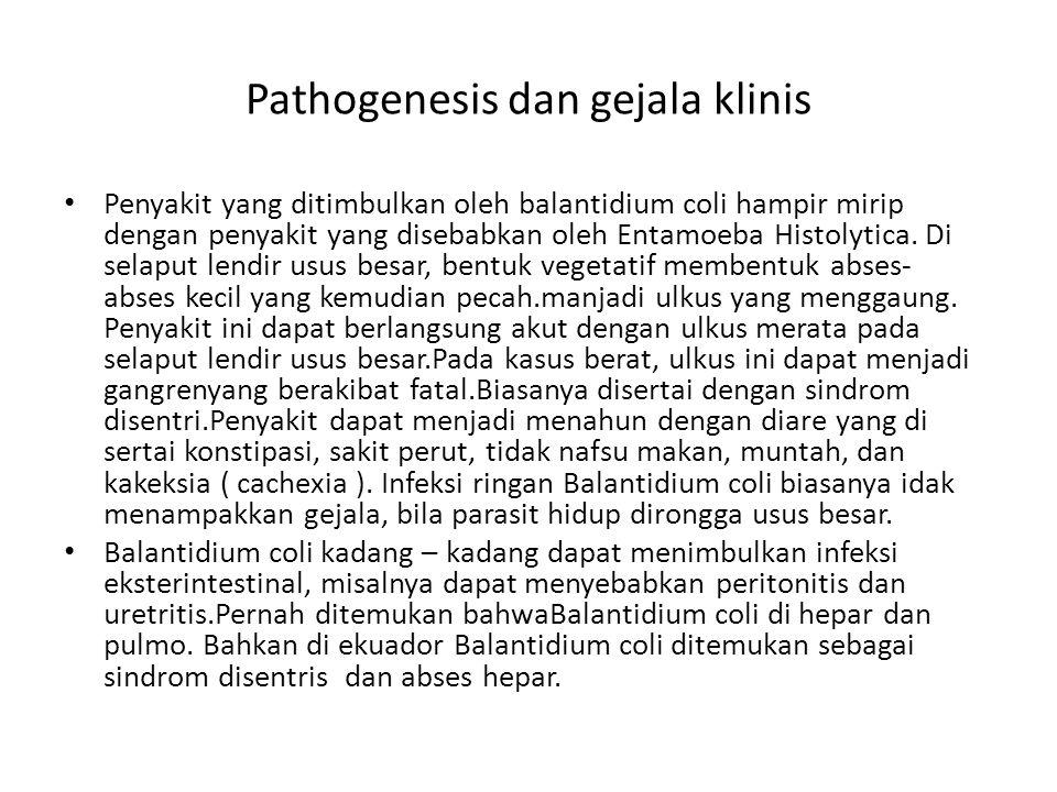 Pathogenesis dan gejala klinis
