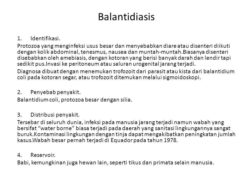 Balantidiasis 1. Identifikasi.