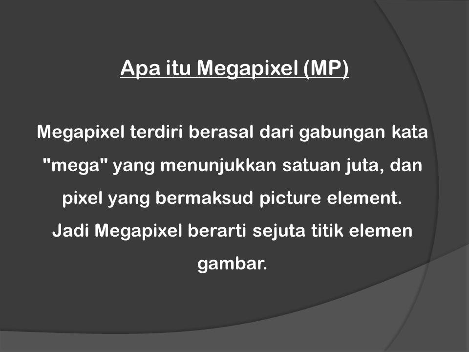 Jadi Megapixel berarti sejuta titik elemen gambar.
