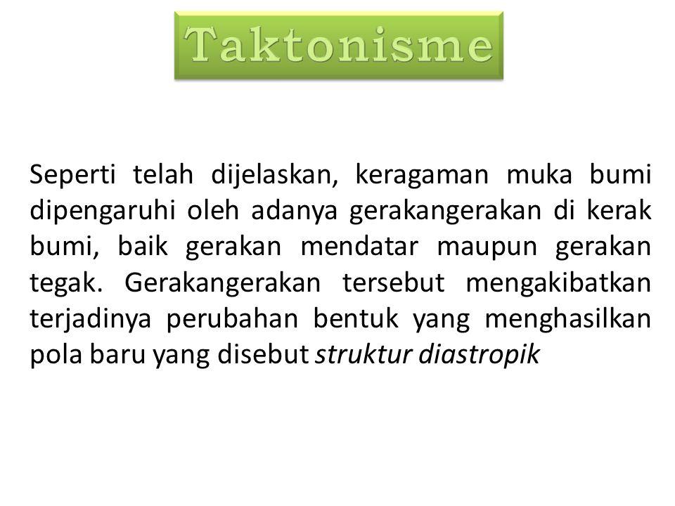 Taktonisme