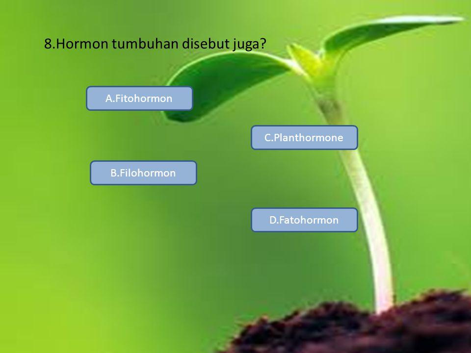 8.Hormon tumbuhan disebut juga