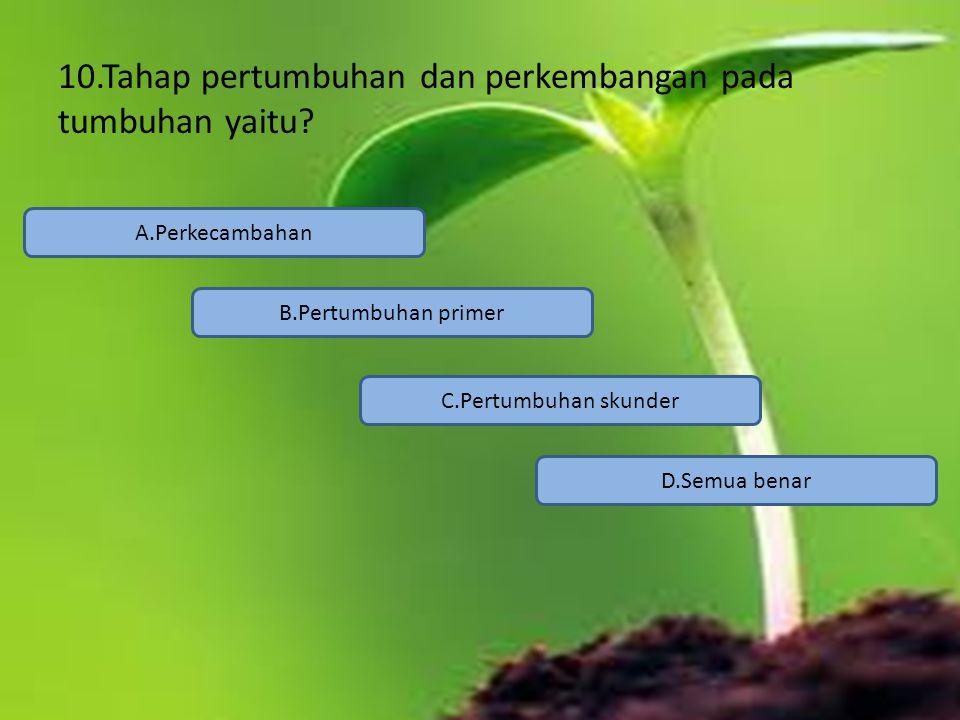 10.Tahap pertumbuhan dan perkembangan pada tumbuhan yaitu