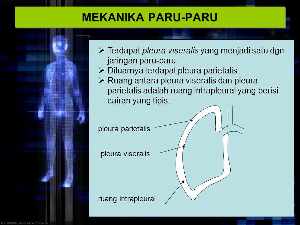 MEKANIKA PARU-PARU Terdapat pleura viseralis yang menjadi satu dgn jaringan paru-paru. Diluarnya terdapat pleura parietalis.