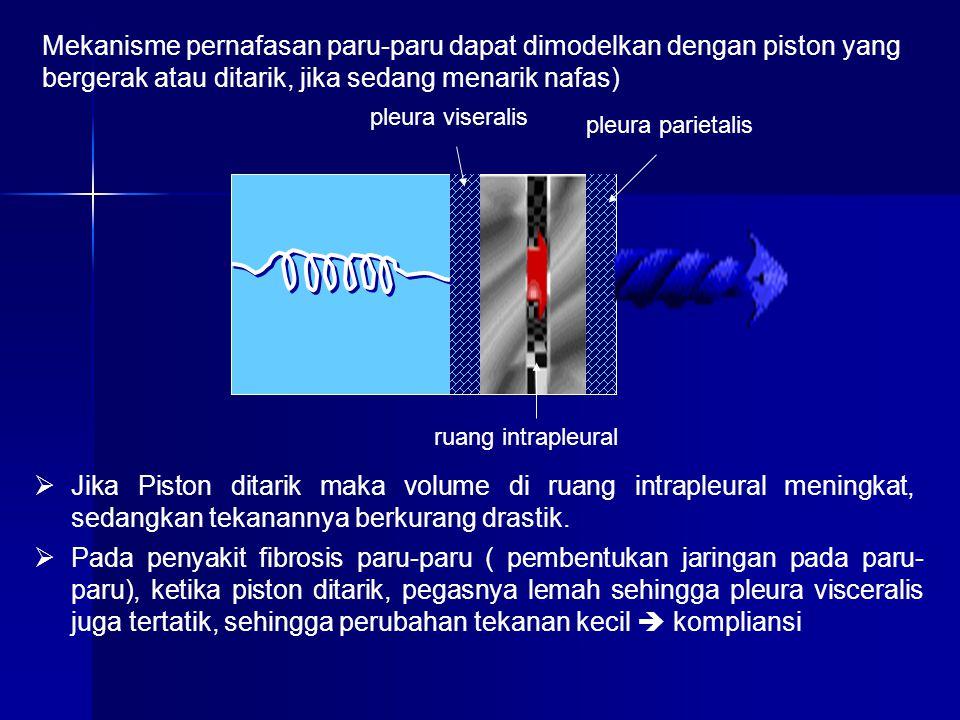 Mekanisme pernafasan paru-paru dapat dimodelkan dengan piston yang bergerak atau ditarik, jika sedang menarik nafas)